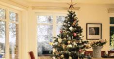 Entdecken Sie unsere Geschenkideen für Groß und Klein!